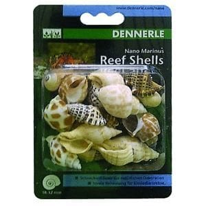 Dennerle Reef Shells available at Marine Fish Shop