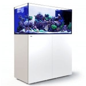 Red Sea Peninsula P500 Complete System