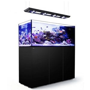 Red Sea Peninsula P650 Deluxe Complete System - Black