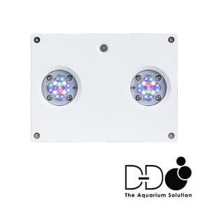 D-D Hydra 32HD Light